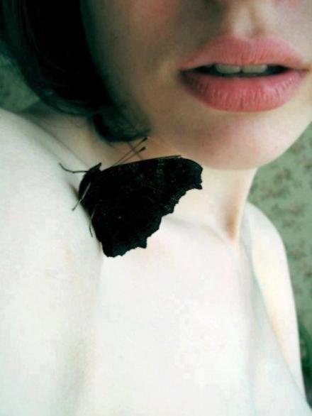 ilovegreeninsp_butterfly